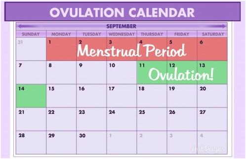 Menghitung Masa Subur dengan Sіѕtеm Kalender,cara menghitung masa subur,Cara mengenali siklus haid,cara alami menentukan jenis kelamin anak,cara membuat anak perempuan,cara membuat anak laki-laki,Cara mengetahui masa ovulasi