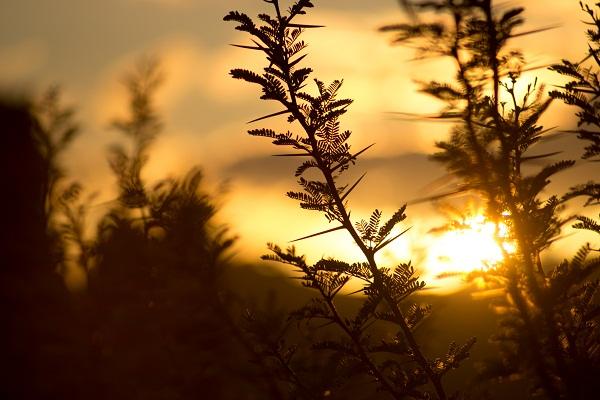 gambar pemandangan senja, gambar pemandangan matahari terbenam, gambar pemandangan senja yang romantis